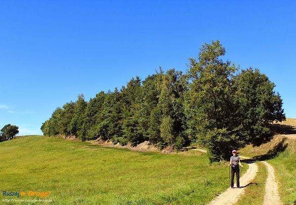 Na trasie Nordic Walking w Hejtusie