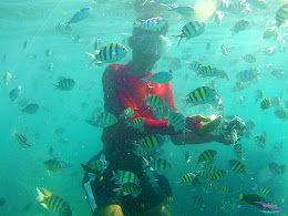 family trip pulau harapan, 1-2 agustus 2015 gopro 20