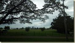 IMG_20180131_Queens Park savanna