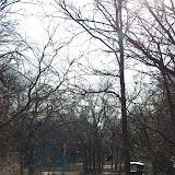 01-05-13 Arbor Hills Nature Preserve - IMGP3940.JPG