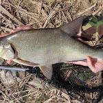20140323_Fishing_Netishyn_032.jpg