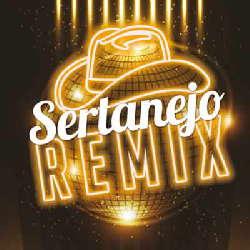 CD Sertanejo - Remix 2017 (Torrent) download
