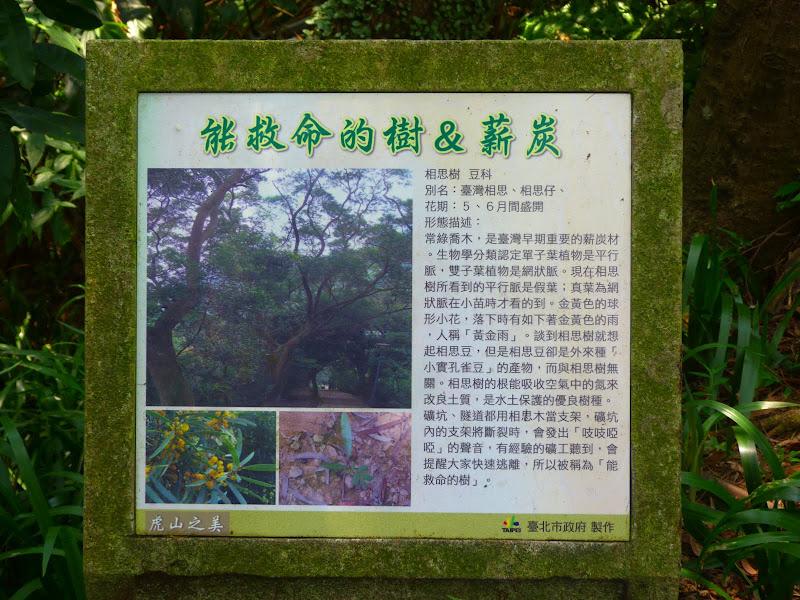 Taipei. Si Shou Shan, et la découverte des maisonnettes du professeur Y I   易教授 - P1340639.JPG