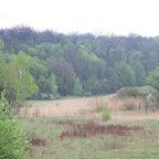Белогорье - Заповедник лес на Ворскле 058.jpg