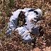 Polícia realiza perícia e encontra peça de roupa íntima de homem no local onde as jovens foram achadas mortas