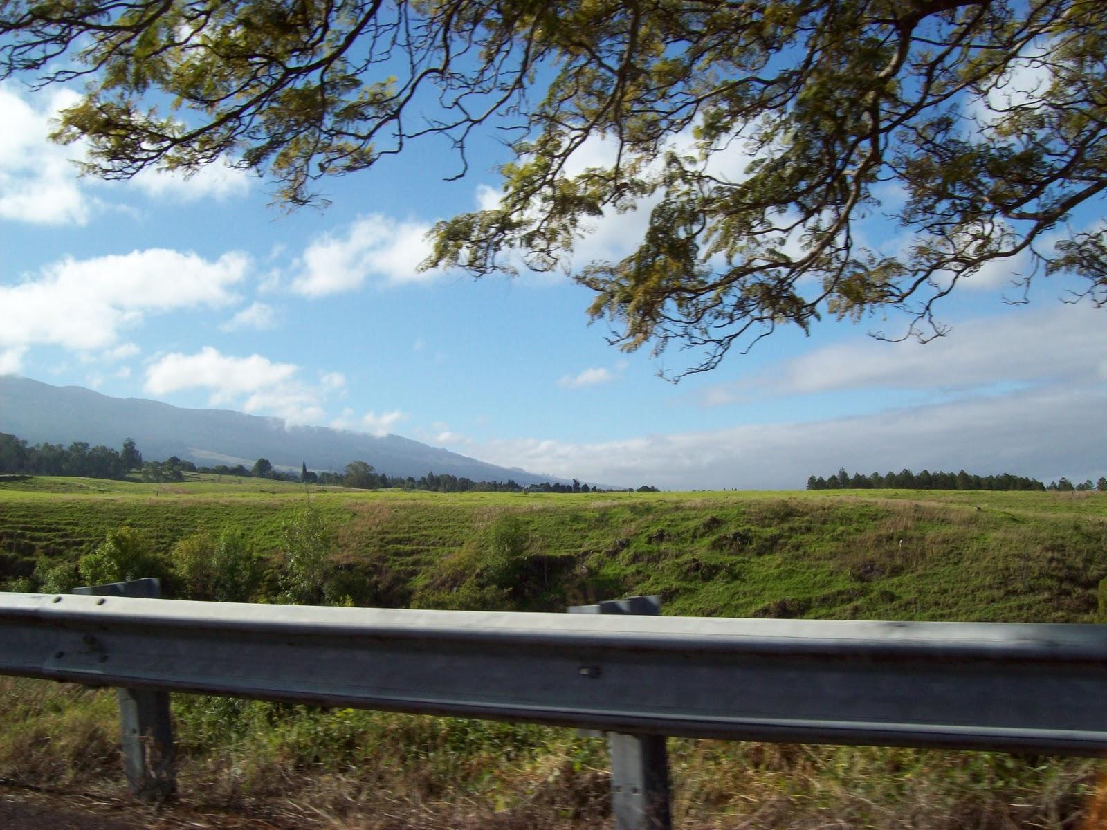 Hawaii Day 8 - 100_8001.JPG