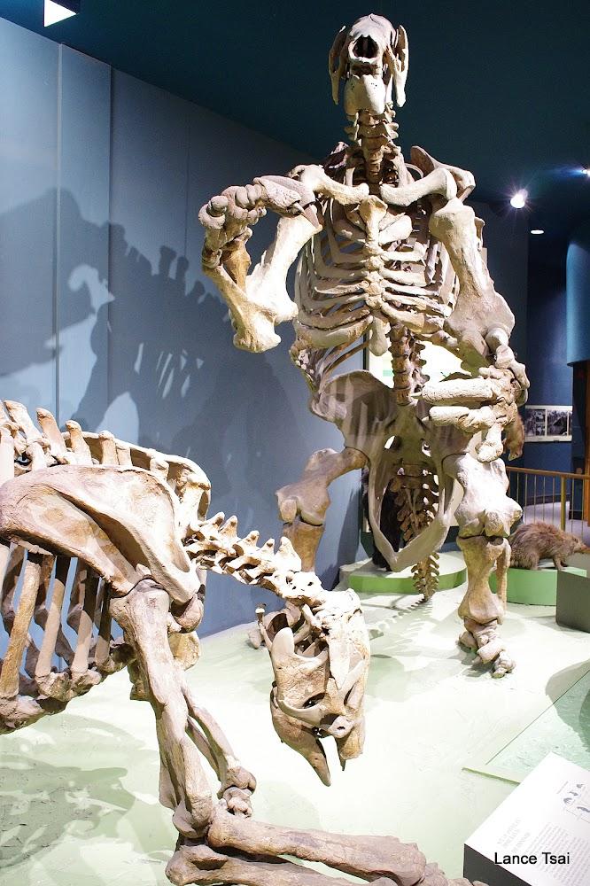美國華盛頓特區國家歷史博物館