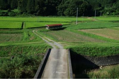 2016年8月 福島県浪江町近くの田園風景