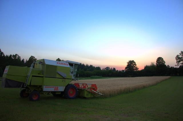 Kmetijstvo-agriculture - DSC_1579.jpg