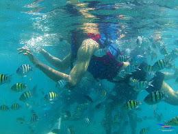 pulau harapan, 5-6 september 2015 skc 012