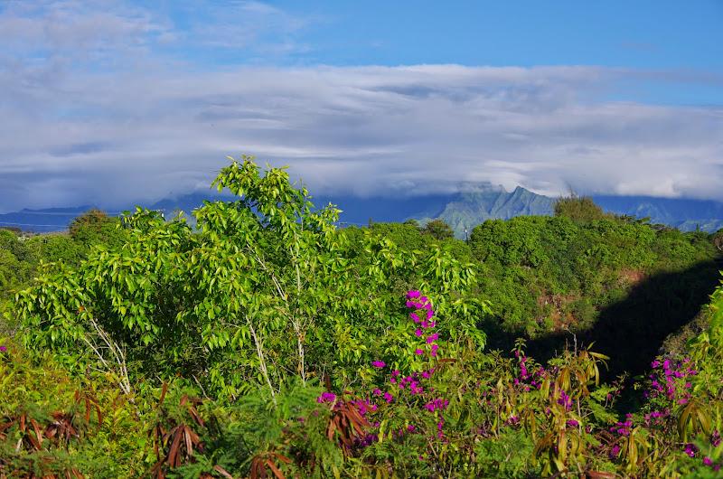 06-27-13 Spouting Horn & Kauai South Shore - IMGP9734.JPG