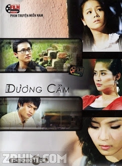 Dương Cầm - Trọn Bộ (2011) Poster