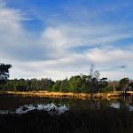 024-Nieuwjaarswandeling met de Bevers.Menno gidst ons door het mooie natuurgebied De Regte Heide te Go+»rle