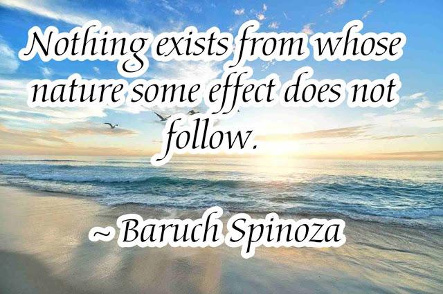 Spinoza nature Quotes