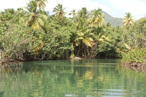 Indian-River-Dominica