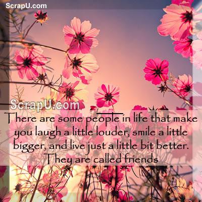 Friendship Flower Pictures