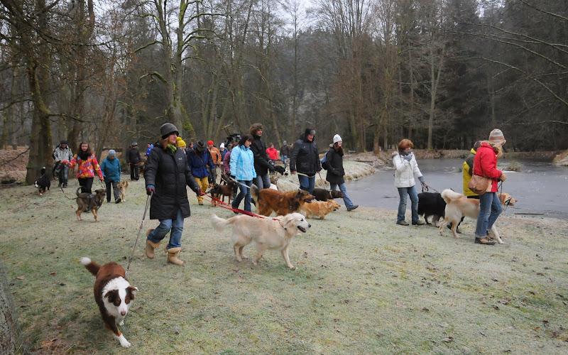 20140101 Neujahrsspaziergang im Waldnaabtal - DSC_9894.JPG
