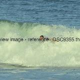 _DSC9355.thumb.jpg