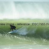 _DSC7955.thumb.jpg