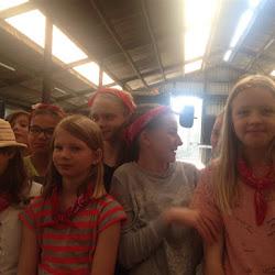 Het vijfde leerjaar op de boerderij