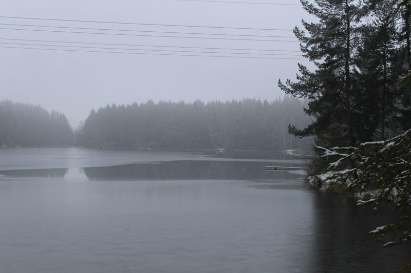 01. Januar 2016: Neujahrswanderung ins Waldnaabtal - IMG_1563.JPG