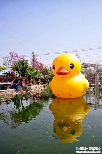 芬園花卉生產休憩園區 - 黃色小鴨