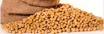 3 Benefits of Soybeans to Maintain Heart Health
