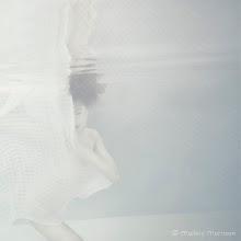 Photo: Fog Shoot.  ©Mallory Morrison
