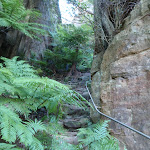 Rock steps on Perrys Track (52325)