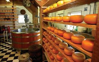 Souk Ahras : l'expérience hollandaise dans la fabrication des fromages thème d'une formation pour agriculteurs