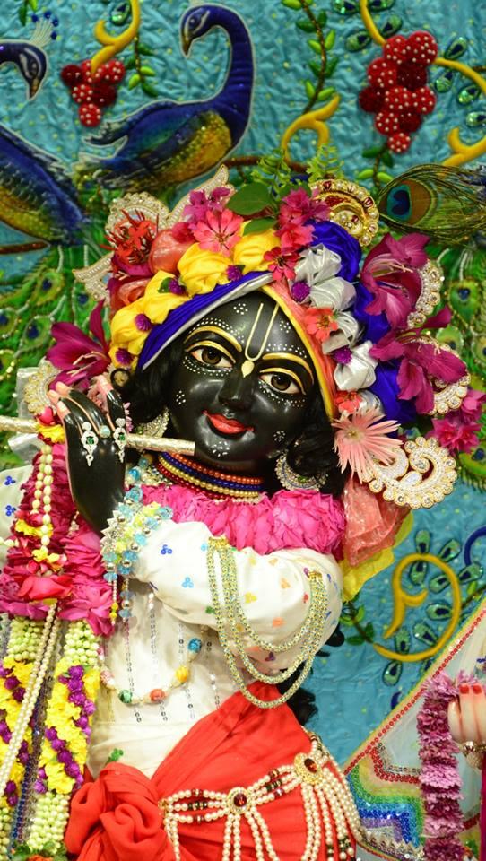 ISKCON GEV Deity Darshan 03 jan 2017 (16)