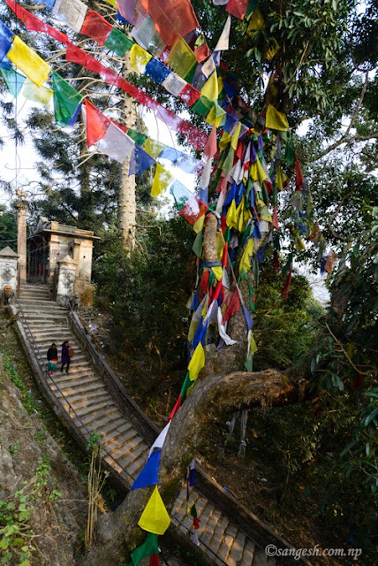 Stairway to Bajrayogini Temple