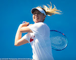 Maria Sharapova - 2016 Australian Open -DSC_2640-2.jpg