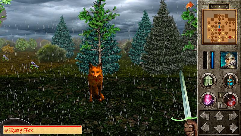 The Quest - Caerworn Castle Screenshot 7