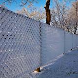 Winter - Winter-012.jpg