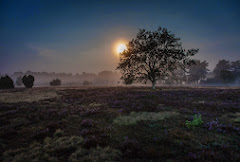 Nordheide_00001-2.jpg