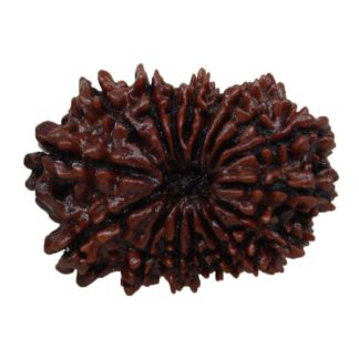 benefits of rudraksha beads
