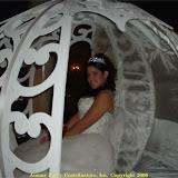 060624AP Alexandria Perez Renaissance Ballrooms