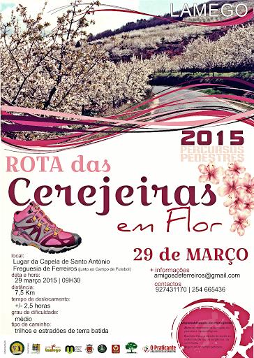 Percurso pedestre em Ferreiros parte à descoberta das cerejeiras em flor