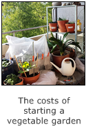 the costs of starting a vegetable garden on the balcony