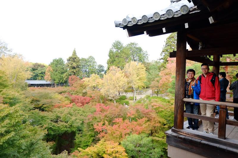 image-東福寺與天天