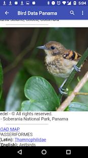 Bird Data - Panama - náhled