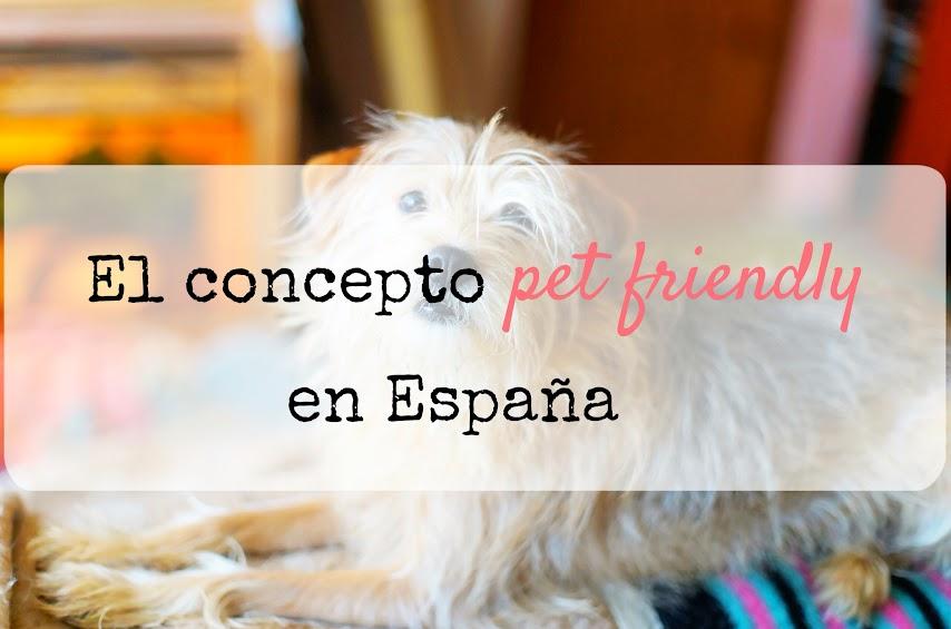 lugares-pet-friendly-españa-que-es-mascotas-perros-gatos
