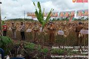Dongkrak Ketahanan Pangan, Dinas Pertanian Kalbar Galakan Komoditi Jagung Hibrida