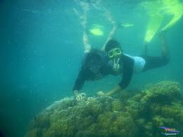 pulau pari, 23-24 mei 2015 38
