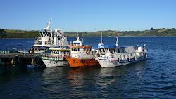 Bateaux de pêcheurs.