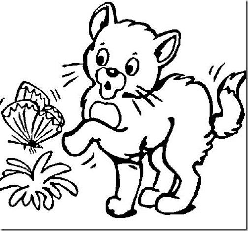 colorear dibujo gato jugando con mariposa