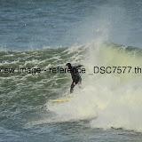 _DSC7577.thumb.jpg