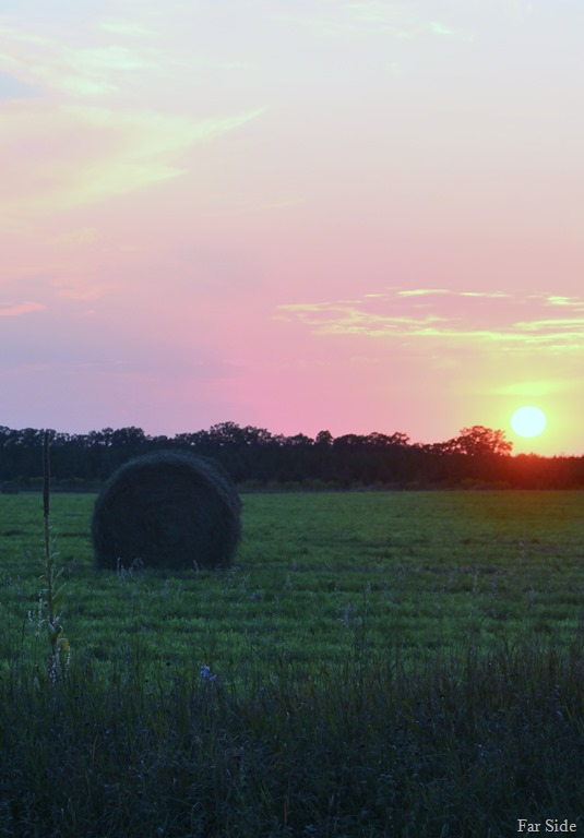 [Hay-field-at-sunset8]