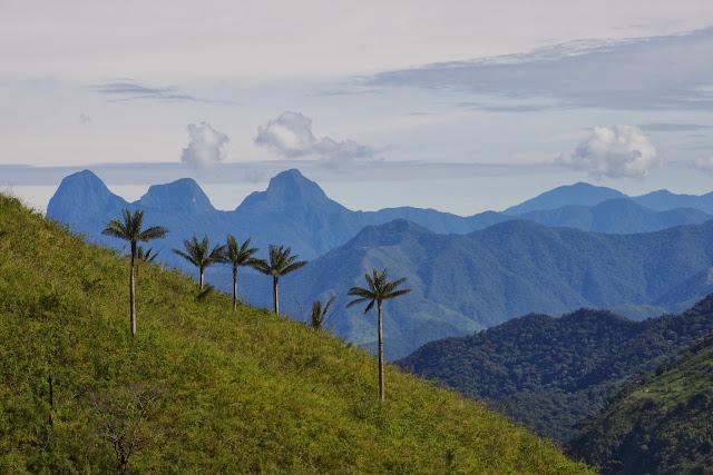 Entre El Limonal et la Merced de Buenos Aires, 2600 m (Imbabura, Équateur), 25 novembre 2013. Photo : J.-M. Gayman